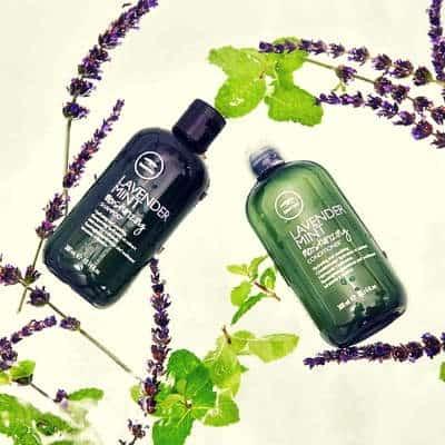 tea tree lavender shampoo